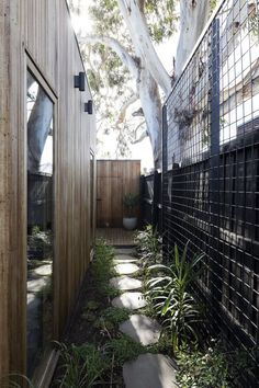 House: 43 Henry Street Northcote Wire mesh along fence to support a growing wall of jasmineWire mesh along fence to support a growing wall of jasmine House Landscape, Garden Landscape Design, House Garden Design, Outdoor Walls, Outdoor Living, Side Yard Landscaping, Landscaping Ideas, Moderne Pools, Narrow Garden