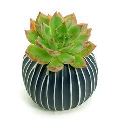 White Porcelain Ceramic Flower Pots / Planter Pots: Black & White Lines Pebble, Cactus, Succulents, Pottery, Vase, Housewarming, Home Décor by BloomyLifePottery on Etsy