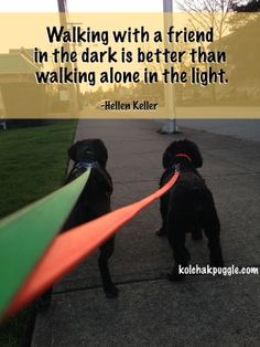 Go for a walk. The dog will thank you. You will thank yourself.