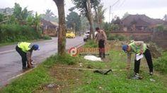 Tabrak Pohon Perindang, Pemotor Tewas Mengenaskan - http://denpostnews.com/2017/07/28/tabrak-pohon-perindang-pemotor-tewas-mengenaskan/
