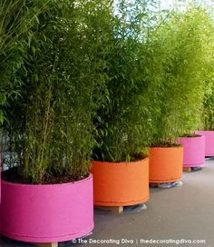 Bright Pink and Orange garden planting pots add modern colorful style to any garden. These large potting containers are perfect for showcasing smaller trees and bushes in a space constrained environment in urban settings. I can also see these fun sherbert