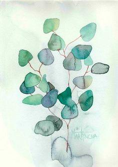 Herbal | Eucaliptus # 4