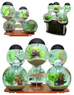 AWESOME aquarium!!!