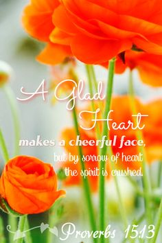 Proverbs 15:13 www.celebrateyourfaith.com