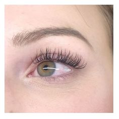 Bronzed Humanity offers Luxury Semi Permanent Eyelash Extensions and Lash Lifts. Custom Bellalash lash extensions done by a Experienced Licensed Lash Artist. Classic, Hybrid and Volume Sets Available. Types Of Eyelash Extensions, Best Lash Extensions, Semi Permanent Eyelash Extensions, Semi Permanent Lashes, Permanent Makeup, Curl Lashes, Fake Lashes, Mascara, Eyeliner