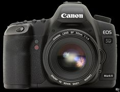 This is my current workhorse camera. Sound is often (but not always) recorded separately & synced in post. If you want a full censor camera at a reasonable cost then this is good; Canon EOS 5D Mark II. The Mark3 is out now, I haven't got my hands on one yet.
