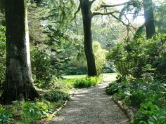 North West Images: Threave Gardens
