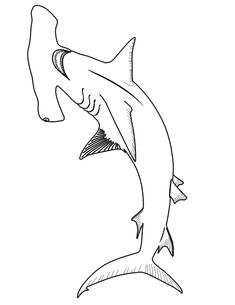 realistic shark coloring pages - photo#19