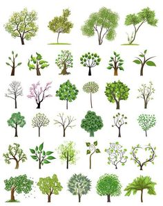 Graphic Art Trees | Vector trees | Vector Graphics Blog