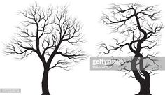 Vector Art : Silhouettes of old huge trees over white background.