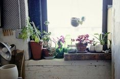 """""""Love gardening, but short on outdoor space? [In this link] you'll find some inspiration for planting indoors — all you need is a window."""""""