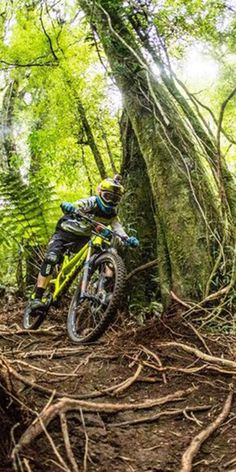 Dan Atherton's training tips for riding Enduro