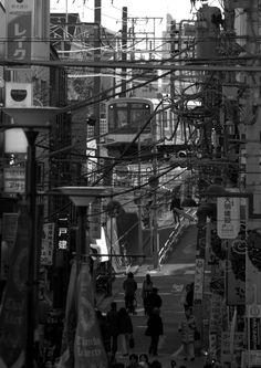"Enjoying the view, peaceful and / or chaotic?  In Jiyugaoka, Tokyo.  ©Photo by Harry Maison a.k.a BlackManInJapan ""JAPAN'S STREET PHOTOGRAPHER EXTRAORDINAIRE"""