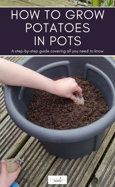 Did you know you can grow potatoes in a bag or container? This method is perfect for small gardens, or your first efforts at growing your own. We show you how to grow potatoes in bags in this step-by-step guide. #growyourown #gardeningtips #growingfamily