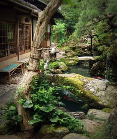 japanese garden Tsuboniwa of a teahouse in Kyoto. I ate there a matcha ice with mashed red bean.