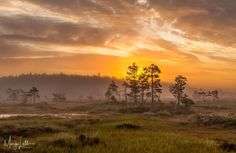 Hiking Routes, Stay Overnight, Campsite, Conservation, Finland, Travel Destinations, Trail, National Parks, Sunset