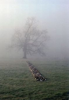 RICHARD LONG    TAME BUZZARD LINE    NEW ART CENTRE ROCHE COURT ENGLAND 2001