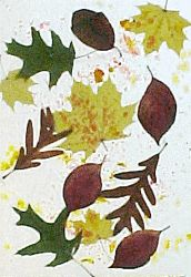 crayon shavings, leaves, and wax paper