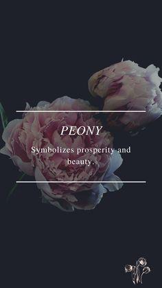 Flower Symbol, Peonies, Bedroom Ideas, Symbols, Flowers, Poster, Beauty, Royal Icing Flowers, Beauty Illustration