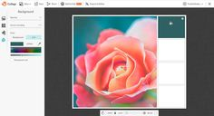 Create a color palette in PicMonkey by using the color picker tool.