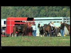 Horseback Trail Ride, Knott County,  Kentucky