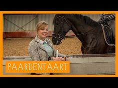 Paardentaart | PaardenpraatTV - YouTube