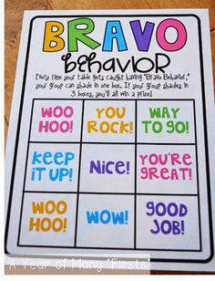 Bravo behavior (FREEBIES!)