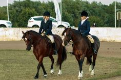 Cheerful Riders Enter The Arena by Martyn  ( ©Bordercollie Productions )