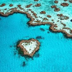 Heart Reef Great Barrier Reef #australia  Photo by @tscharke  Hard to believe it but it's real. Heart Reef is an incredible sight from the air. A small coral reef almost perfectly shaped like a love heart. It is part of the much larger Hardy Reef which is one of over 2900 individual reefs that make up of the Great Barrier Reef. This reef stretches over 2300km along the northern coast of @Queensland and is so big it can be seen from outer space.  #lovewhitsundays #GreatBarrierReef…
