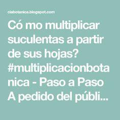 Có mo multiplicar suculentas a partir de sus hojas? #multiplicacionbotanica - Paso a Paso A pedido del público llegó el post quereúneto...