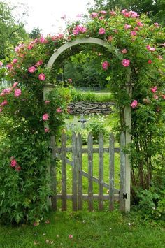 Great entrance into any yard!