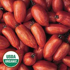 Speckled Roman Organic Tomato - Seed Savers Exchange