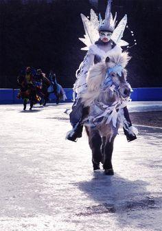 IceHorse 2015 Berlin http://www.pferd-kultur.de/content/icehorse-2015-berlin-islandpferde-em-auf-eis