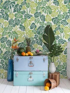 Aimee Wilder wallpaper -Deliciosa in Bungalow colorway - part of bungalow line