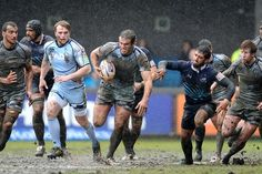 Cardiff Blues v Zebre, 13/04/2013