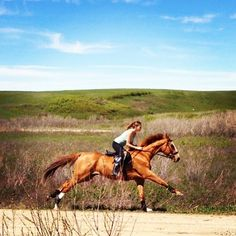 a good gallop through a field has been found to solve all of life's problems.