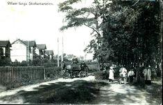 Hedmark fylke Hamar motiv langs Storhamarveien med folk og hestedrosje. Utg H. A. Samuelsen, Hamar postgått 1920