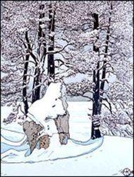 Snow Tom killion