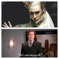 I'm crying! LOL. He *IS* an angry elf!