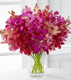 Tickled Pink Orchid Bouquet - 13 Stems - VASE INCLUDED