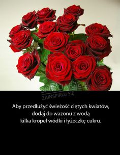 jak przedłużyć życie ciętych kwiatów Good Advice, Flower Decorations, Kids And Parenting, Home Remedies, Fun Facts, Diy And Crafts, Life Hacks, Beauty Hacks, Rose