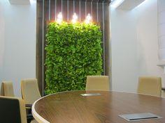 Bepflanzte Wand grün bepflanzte wand büro begrünung und and wands