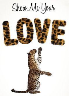 leopard print, quotes, leopard love, show me your love,