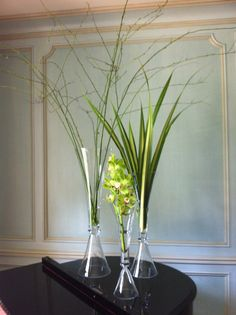 Watered Garden Florist - Because not all art comes in a frame…