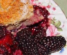 Fresh Blackberry Cobbler with Sweet, Tender Biscuits - la bella vita ...