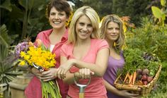 Garden Angels is a practical gardening series presented by three well known and eminently qualified horticulturalists, Melissa King, Jody Rigby and Lighting Your Garden, Home Channel, Latest House Designs, Garden Angels, Country Life, Vegetable Garden, Diys, Gardening, Herb