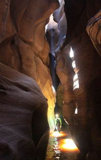 rappelling in the Great Cathedral of Pine Creek. Zion National Park. Utah.