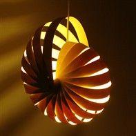 nautilus timber lamp