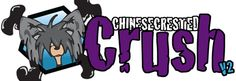 Great site for those of you who love and want to learn more about Chinese Crested dogs. LOVE this place!