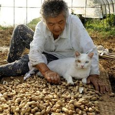 Miyoko Ihara has been taking photographs of her grandmother, Misao and her beloved cat Fukumaru since their relationship began in 2003. Their closeness has been captured through a series of lovely photographs. 2-06-13 / Miyoko Ihara
